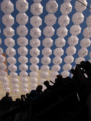 Canopy of white umbrellas